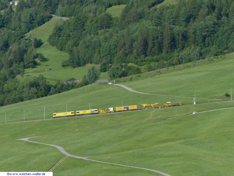 2020.07.25.4xschalke_am_Bernina226k_detail.jpg