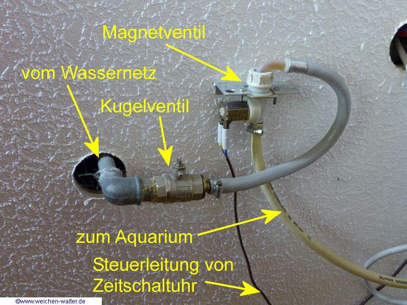 Automatischer wasserwechsel aquarium forum for Aquarium wasserwechsel